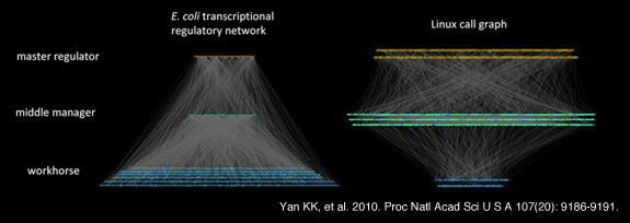 Yan KK, Fang G, Bhardwaj N, Alexander RP, Gerstein M. 2010. Comparing genomes to computer operating systems in terms of the topology and evolution of their regulatory control networks. Proc Natl Acad Sci U S A 107(20): 9186-9191.